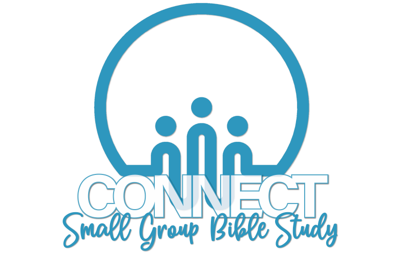 Connect In-Person Small Group Bible Studies